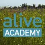 alive-academy
